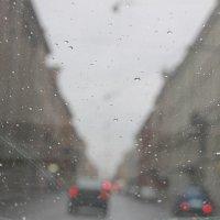 Дождливо в последний день марта... :: Tatiana Markova