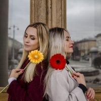 Весна... Цветы... Мечты... :: Юлия