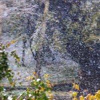 А снег идет... :: олег свирский