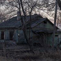 Вот жизнь ... :: Евгений Хвальчев