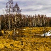 Весна :: Виктор Корочкин