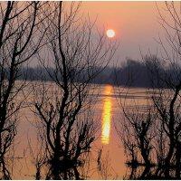 Холодное весеннее утро :: Геннадий Худолеев