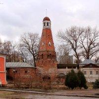 Симонов монастырь :: Светлана