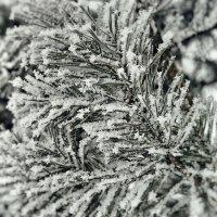 Зимний узор. :: Андрий Майковский