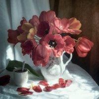 С тюльпанами :: Инна Грицик