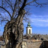 сербская церковь в пригороде Будапешта :: Георгий А