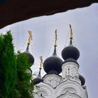 Монастырские купола... :: Николай Варламов