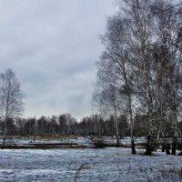 Парк военного городка г Юрга :: Валентина Ильиных