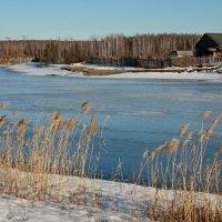 Весна, апрель, проснулась речка... :: Нэля Лысенко