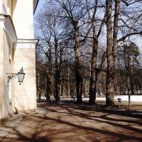 Павловский парк :: Виктор Никитенко