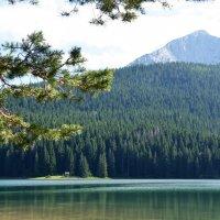 Черногория. Национальный парк Дурмитор. Черное озеро. :: Ольга Кирсанова