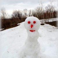 Апрельские снеговики в трансе..:-) :: Андрей Заломленков