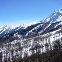 Мы спусаемся вниз с покоренных вершин, оставляя в горах свое сердце :: Юлия Грозенко