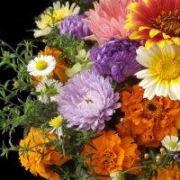 Садовые цветы :: Ольга Ерощенко