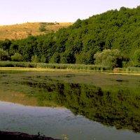 Озеро :: Николай Сидаш