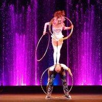 цирк аквамарин - попался :: Natalia Mihailova