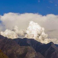 Алтайские горизонты. :: юрий Амосов