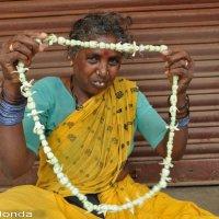Индия 2013 :: Ирина Хонда