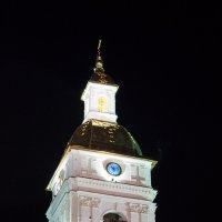 Колокольня Тобольского Кремля :: Павел Белоус