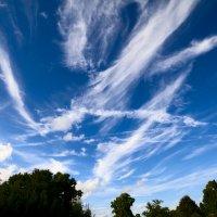 и только неба синева :: Никита Храмцов