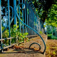 Голубой забор :: Алексей Попов