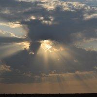 sun beams :: Юра