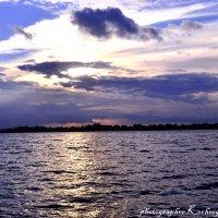 Городское озеро :: &Любовь& &~&