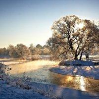 Подарок на Старый Новий Год :: Виталий Полищук