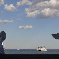 Хранители Ялтинской набережной :: Stas Ra