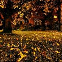 Осень :: Наташа Мазурова