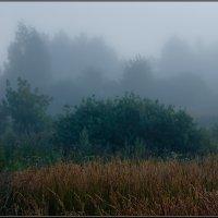 Утро туманное, утро седое... :: Александр