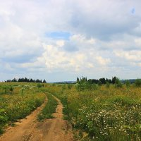 Просёлочная дорога :: Александр Щеклеин
