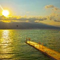 Утренние купания :: Константин Николаенко