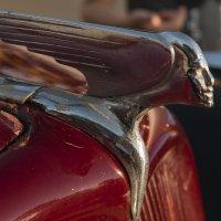 Эмблема Ситроэна 1951г :: susanna vasershtein