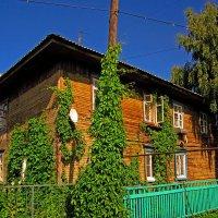 Зеленый дом :: Павел Зюзин