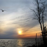 закат в заливе Горьковского моря :: Лидия Юсупова