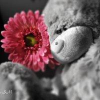 "Мягкая игрушка ""Мишка Тэдди"" :: Grishkov S.M."