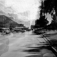 Дорога пьяного водителя. :: Leonid Volodko