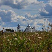 Никитский монастырь - Переславль-Залесский :: Александр Ефремкин