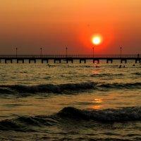 Кленовое солнце :: Александр Мор