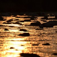 Сонная река :: Андрей Земcкий
