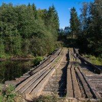 Мост :: Борис Устюжанин