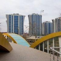 Город Аргун.Чечня. :: Андрей Дурапов
