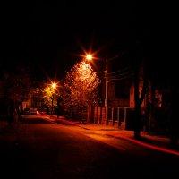 Ночь, улица, фонарь... :: hanter-62
