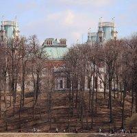 Весенние прогулки по Царицыно :: Светлана