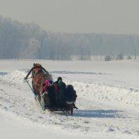 В дальнюю снежную даль... :: nadyasilyuk Вознюк