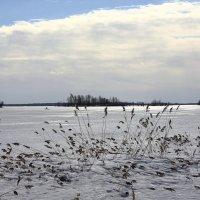 Озеро,весна :: Павел