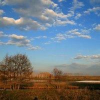 Весна вошла в законные права, как нежит сердце это время года... :: Евгений Юрков