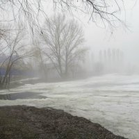 апрель,парк,дождь :: Елена Шаламова