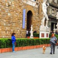 Площадь Сеньории Флоренция. :: Гала
